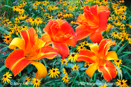 Daylilies and Rudbeckia by the Artist, Mary Ahern