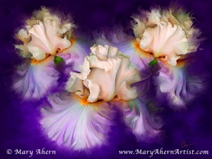 "Mixed Media Painting. Dancing Iris Trio. Available in 30x40"" and 18x24"", standard or Gallery Wrapped."